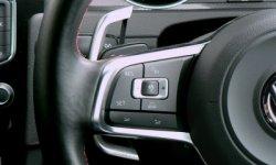 画像1: maniacs DSG Paddle 4D Extension (パドルエクステンション) for VW