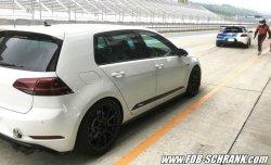 画像4: 【今月の特価商品】Volkswagen Racingline Performance サイドドアデカール /ゴルフ7