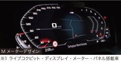 画像3: PLUG DSP! for BMW Gxx
