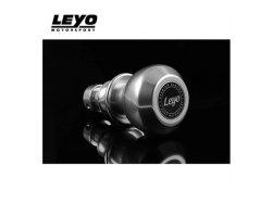画像1: LEYO Motorsport BILLET DSG シフトノブ SILVER